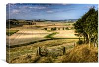 The Hanging Field, Canvas Print