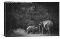Mother and Baby Asian Elephant , Canvas Print