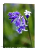 Bluebell Stem 3, Canvas Print