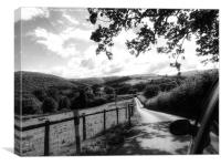 Out and About in the Welsh Countryside, Canvas Print