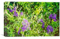 Wild Delphinium Bliss, Canvas Print
