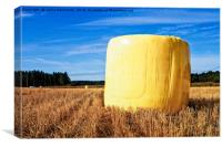 Yellow Hay Bale On The Fields, Canvas Print
