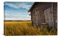Barn Doors And Rye Field, Canvas Print