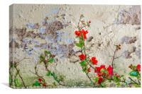 Red Flowers Over Damaged Wall, Canvas Print