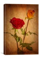 Roses Two Ways, Canvas Print