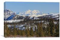 Denali National Park and Preserve, Canvas Print
