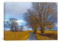 millhalf lane whitney on wye herefordshire, Canvas Print