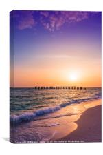 Gasparilla Island Sunset , Canvas Print
