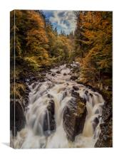 The Hermitage Waterfall, Canvas Print