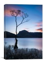 Sunrise at Buttermere, Canvas Print
