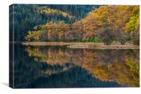 Colorful autumn trees and reflections. , Canvas Print