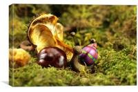 Snail Tilly in the autumn Moss , Canvas Print