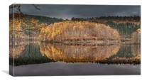 Loch Garry (Autumn Gold), Canvas Print