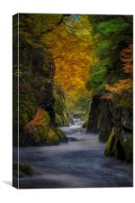 The Fairy Glen #4, Canvas Print