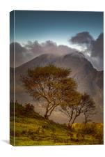Blaven and Silver Birch Trees, Canvas Print
