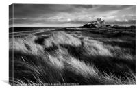 Bamburgh Castle (in Mono) Northumberland, England, Canvas Print