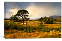 Early light at Loch Tulla, Bridge of Orchy, Canvas Print