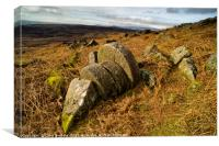 Abandoned Mill Stones, under Stanage Edge, the Pea, Canvas Print