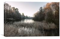Hoar Frost at Virginia Water Lake, Canvas Print
