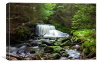 Waterfall in Sumava., Canvas Print