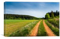 Countryside road in summer field. South Bohemian r, Canvas Print