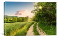 Summer scenery. The deciduous forest and rural roa, Canvas Print
