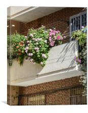 Balcony with flowers  in Madrid, Canvas Print
