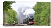 Flying Scotsman passing by Sheffield, Canvas Print