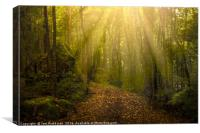 Mystical forest, Canvas Print