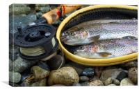 Fly Reel and pole with trout in net , Canvas Print