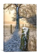 Misty Winters Day, Canvas Print