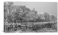 Freezing Fog in Teesdale, Canvas Print