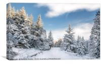 Snow in Teesdale, Canvas Print