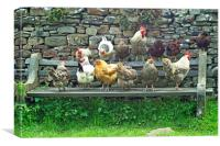 Hens on a Bench, Canvas Print