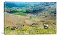 Looking towards Little Langdale from Wrynose Pass , Canvas Print