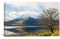 Loch Leven and Winter Tree , Canvas Print