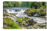 Cenarth Falls on the River Teifi Carmarthenshire, Canvas Print