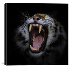 Call of the wild , Canvas Print