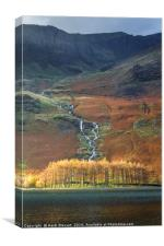 Larch Trees at Buttermere Lake, Canvas Print