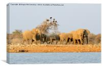 Herd of elephants with vultures at the waterhole, Canvas Print