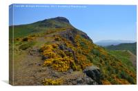 The ascent up Whinny Hill to Arthur's Seat, Canvas Print