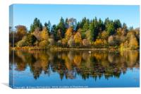 Autumn reflections on Penicuik High Pond, Canvas Print