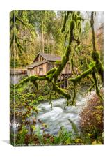 The Cedar Creek Grist Mill in Washington State., Canvas Print