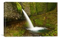 Ponytail Falls at the Columbia River Gorge., Canvas Print