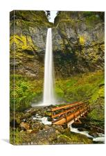 Scenic Elowah Falls in the Columbia River Gorge, Canvas Print