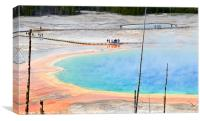 Overhead view of Grand Prismatic Spring in Yellows, Canvas Print