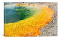 Morning Glory Pool Closeup in Yellowstone National, Canvas Print