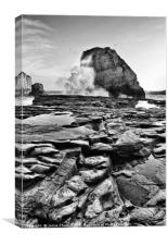 Dramatic view of Shark Fin Cove, Canvas Print