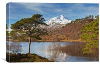 Loch Affric, Scotland, Canvas Print