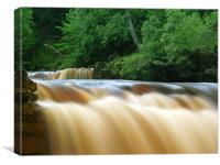 Kisdon Force in Swaledale, Canvas Print